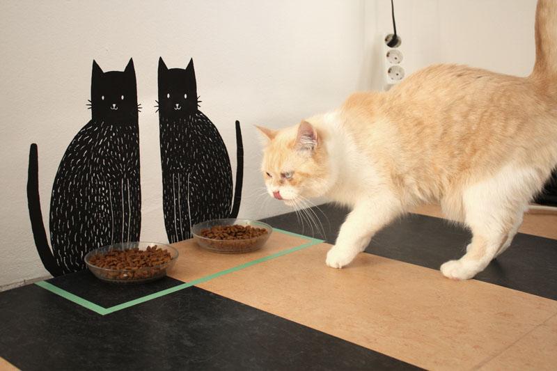 Neuer Essplatz für die Katzen