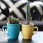 Urban Jungle Bloggers: Dress up your plants + DIY