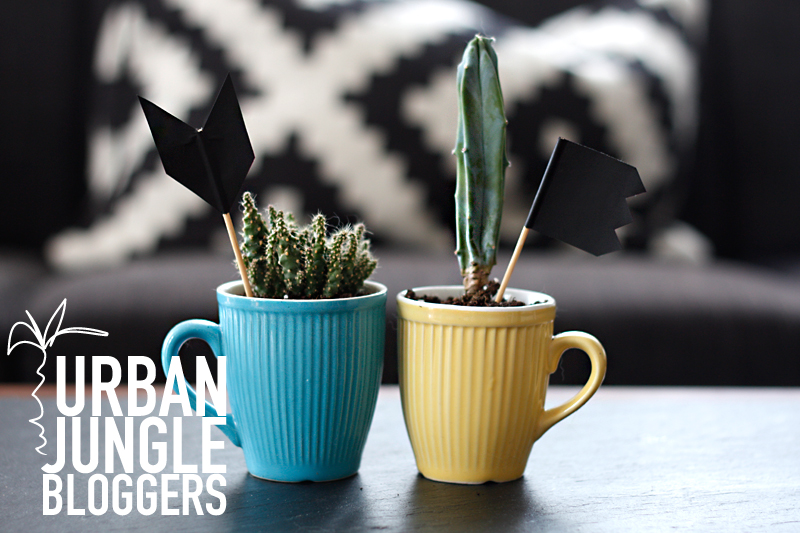 Urban Jungle Bloggers: Dress up your plants + DIY