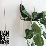 Urban Jungle Bloggers: Hängende Pflanzen + Give Away
