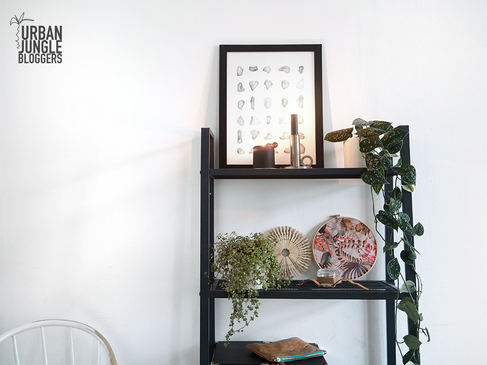 Urban Jungle Bloggers – Plantshelfie #2