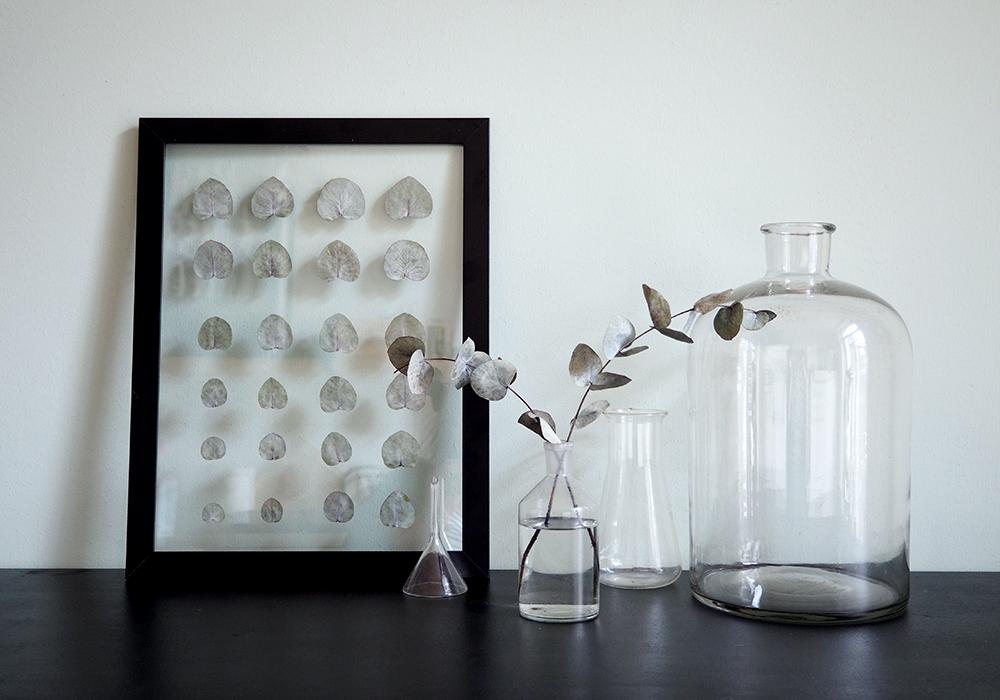 transparenter DIY Rahmen für deine Pflanzen
