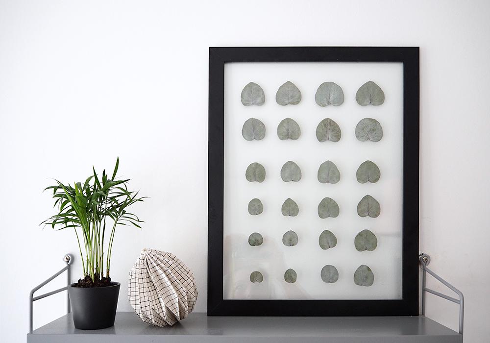 transparenter DIY Rahmen für deine Pflanzen - www.craftifair.com