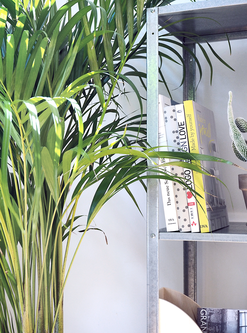 Urban Jungle im Homeoffice