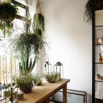 Shopping Tipp: Goldregen Floraldesign im Belgischen Viertel