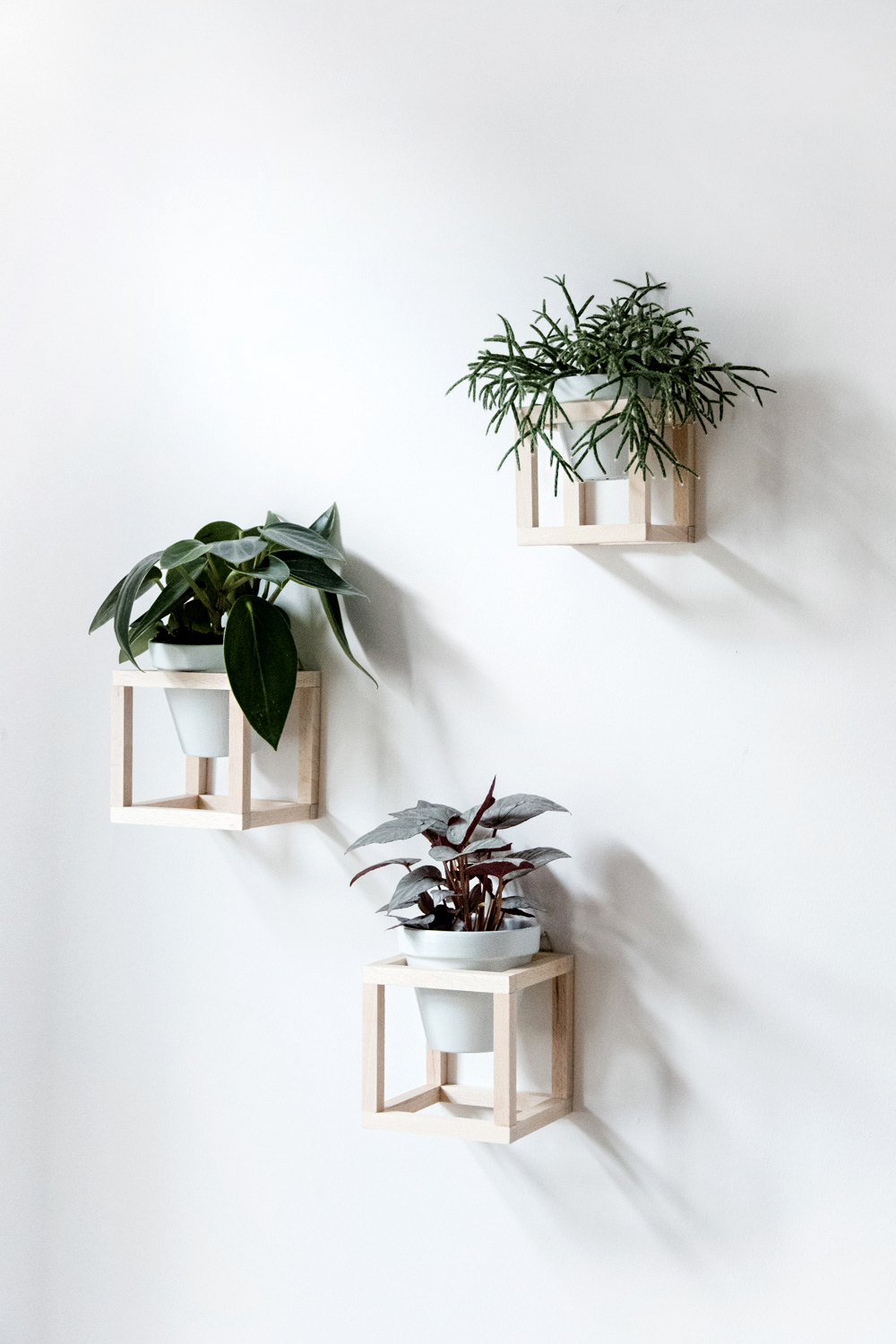 DIY hanging plant holder - www.craftifair.de