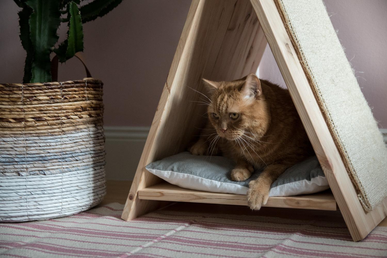 Tutorial für ein DIY Katzentipi mit Kratzmöglicheit - www.craftifair.de