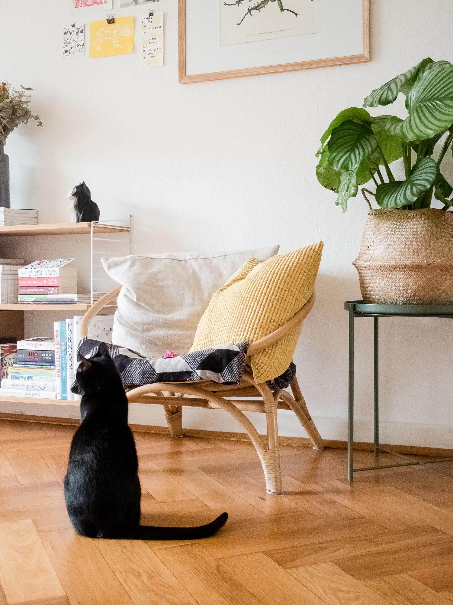 Wohnen mit Katzen - Homestory bei Saskia und Nick // www.craftifair.com
