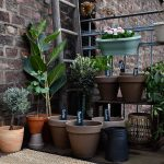 Projekt Urban Farming – Gemüse vom Balkon mit Deine Ernte von Substral