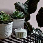 Flea Market Finds #2 – Töpfe für die Pflanzen