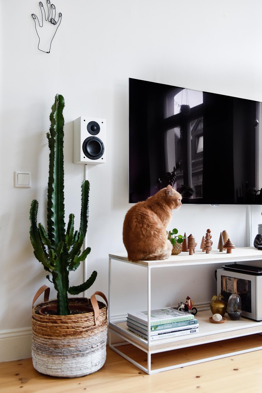 katzen und pflanzen in einer wohnung geht das berhaupt. Black Bedroom Furniture Sets. Home Design Ideas