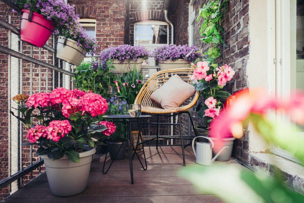 So wird mein kleiner Balkon zur Stadtoase – eine Balkonstory mit Pflanzenfreude.de und EMSA