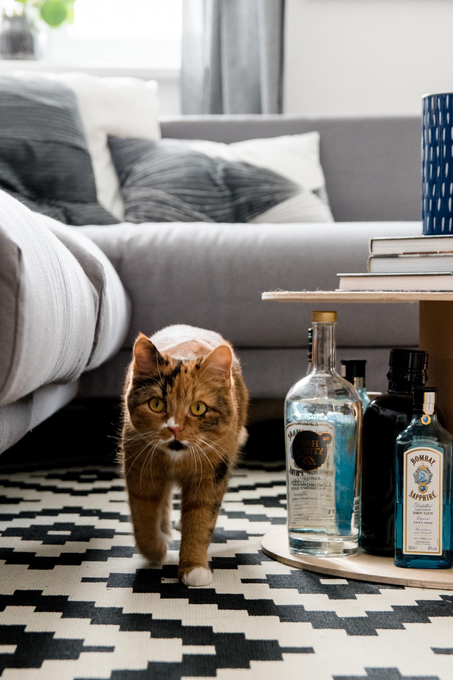 Homestory bei Katzenbesitzern - Claudetta von Doitbutdoitnow // www.craftifair.com