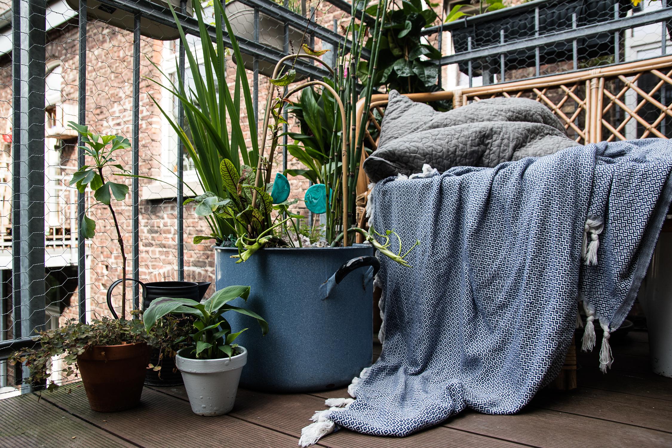 DIY Miniteich für Balkon