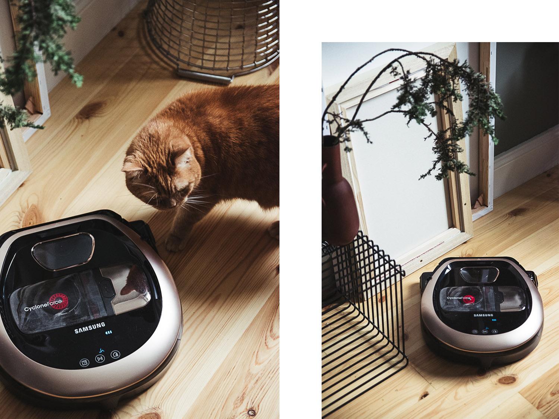Mit dem Samsung POWERbot gegen Katzenhaare und Dreck – Ein Test