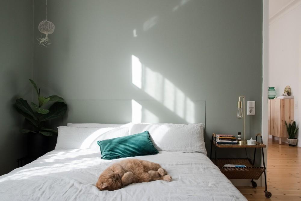 Herbal Love von toom ist die perfekte Wandfarbe für das Schlafzimmer